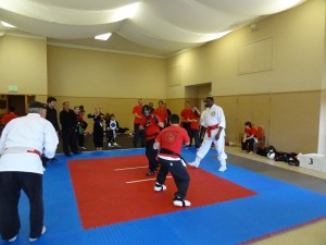 Zack Mark Spar Tournament Long View